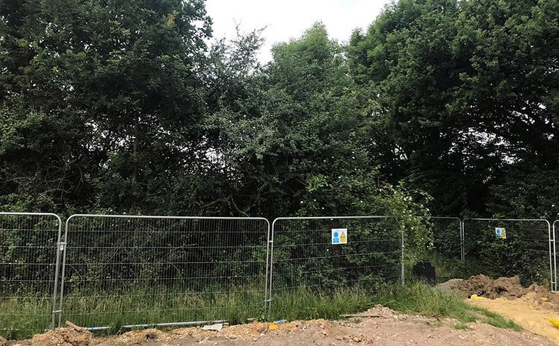 Tree Protection Fencing